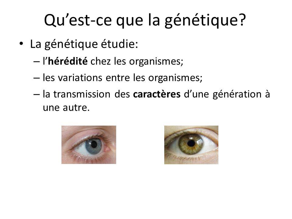 Quest-ce que la génétique? La génétique étudie: – lhérédité chez les organismes; – les variations entre les organismes; – la transmission des caractèr