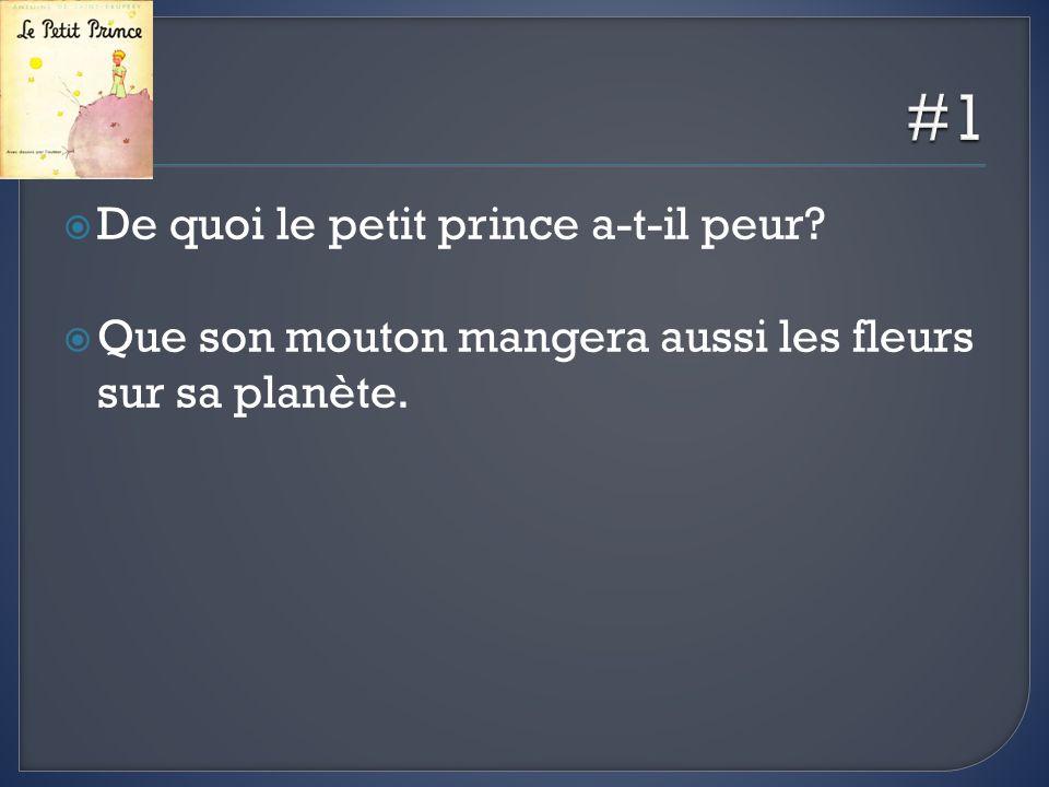 De quoi le petit prince a-t-il peur? Que son mouton mangera aussi les fleurs sur sa planète.