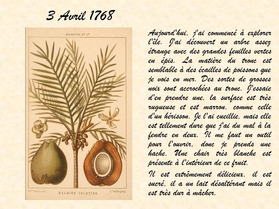 3 Avril 1768 Aujourd'hui, j'ai commencé à explorer l'île. J'ai découvert un arbre assez étrange avec des grandes feuilles vertes en épis. La matière d