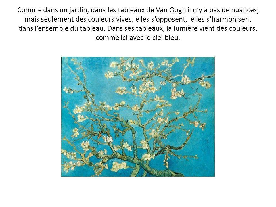 Comme dans un jardin, dans les tableaux de Van Gogh il ny a pas de nuances, mais seulement des couleurs vives, elles sopposent, elles sharmonisent dan