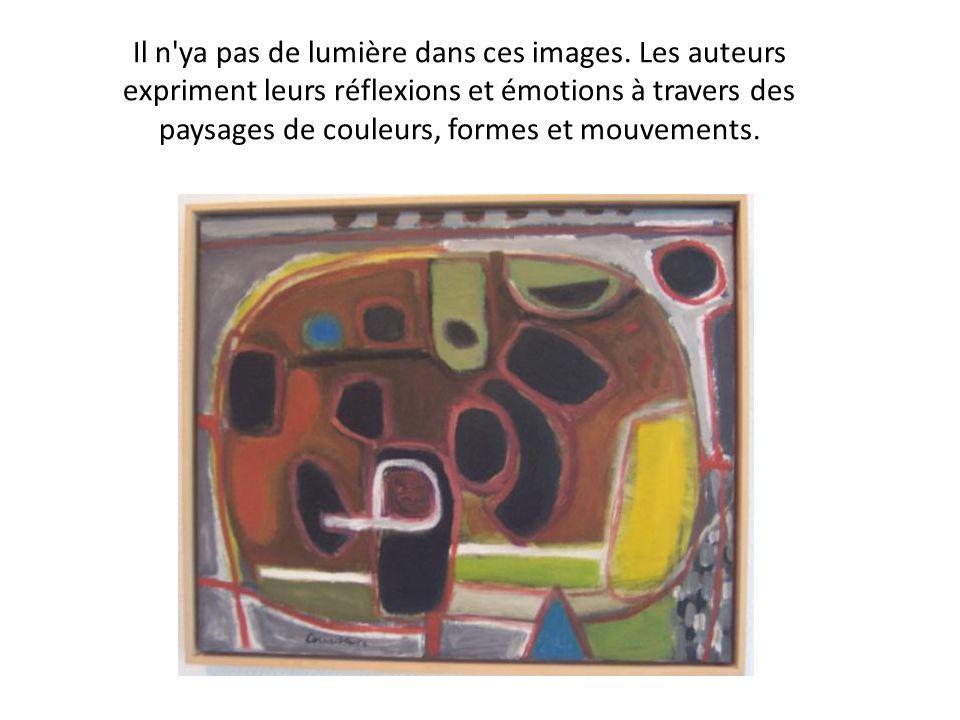 Il n'ya pas de lumière dans ces images. Les auteurs expriment leurs réflexions et émotions à travers des paysages de couleurs, formes et mouvements.