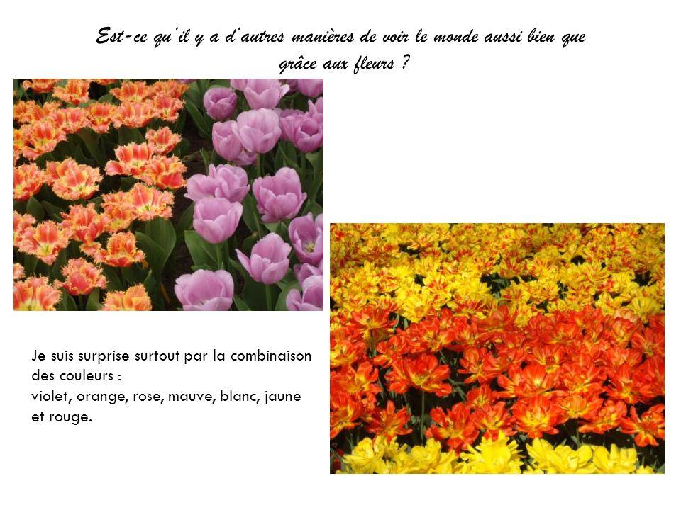 Est-ce quil y a dautres manières de voir le monde aussi bien que grâce aux fleurs ? Je suis surprise surtout par la combinaison des couleurs : violet,