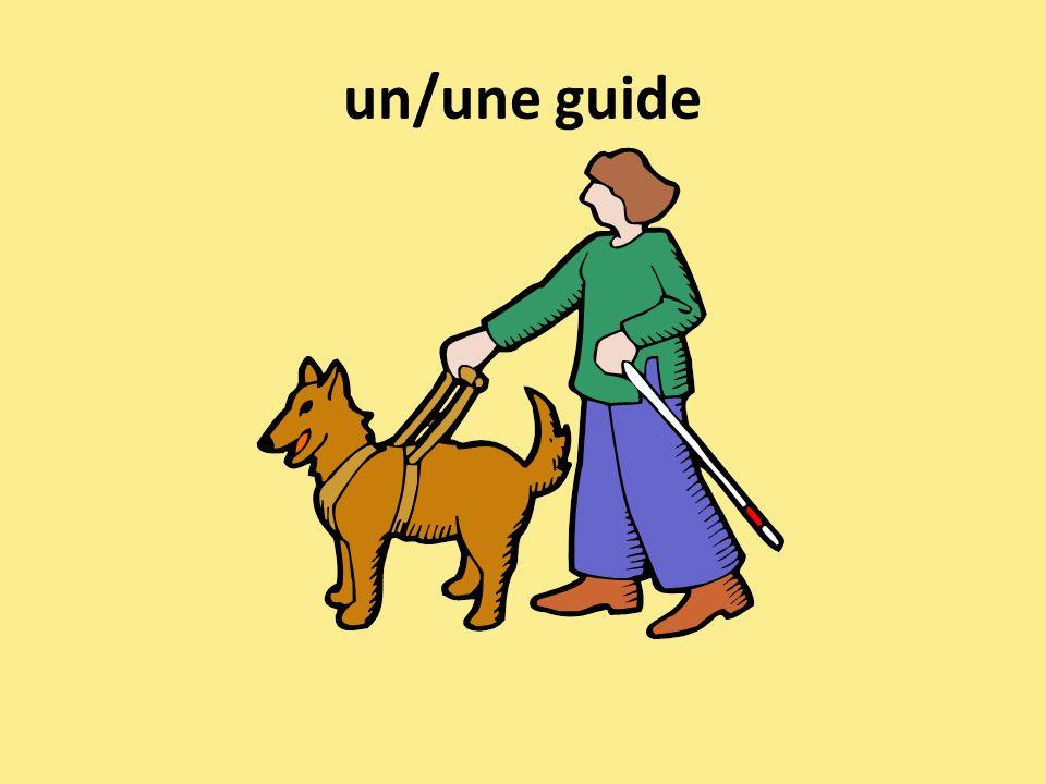 un/une guide