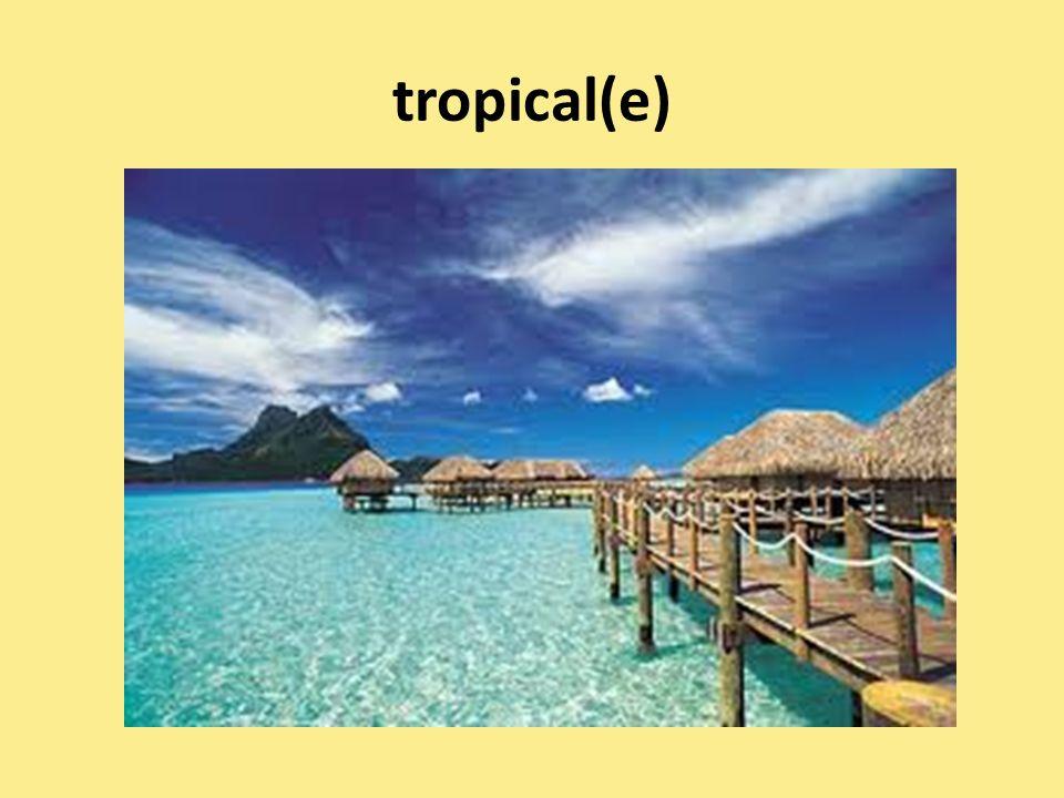 tropical(e)