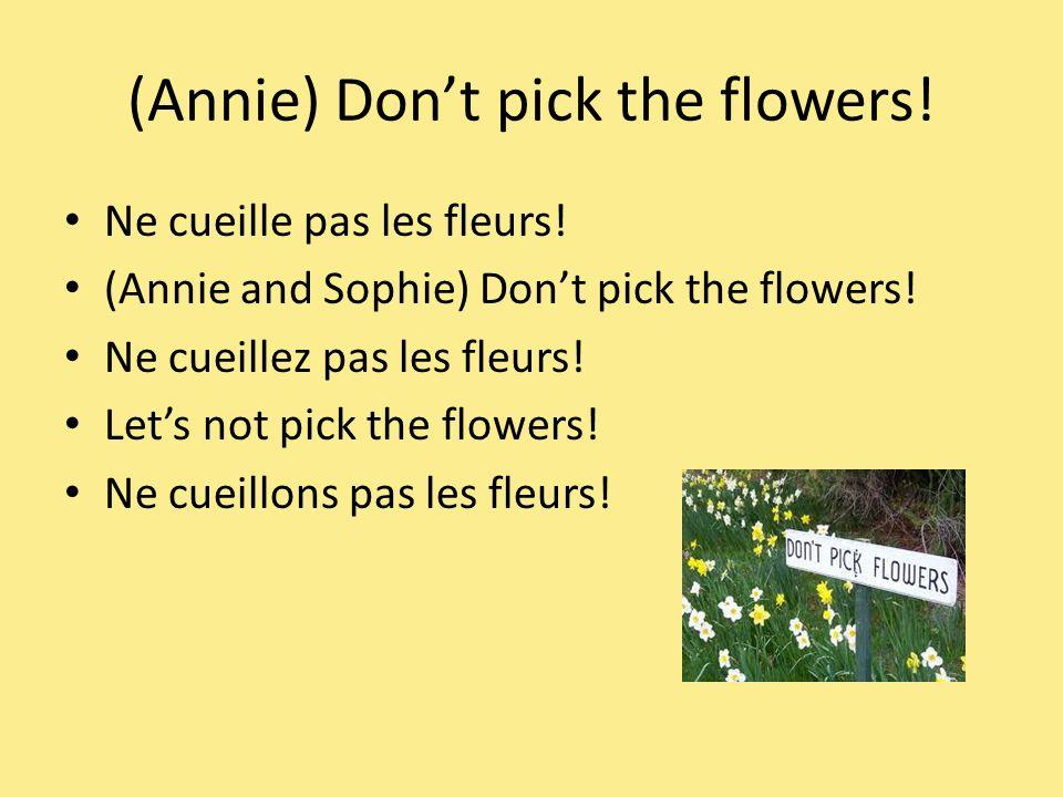 (Annie) Dont pick the flowers. Ne cueille pas les fleurs.