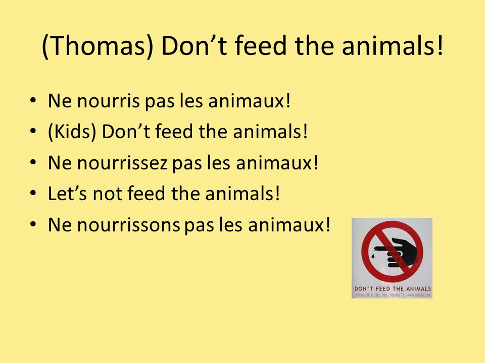 (Thomas) Dont feed the animals. Ne nourris pas les animaux.