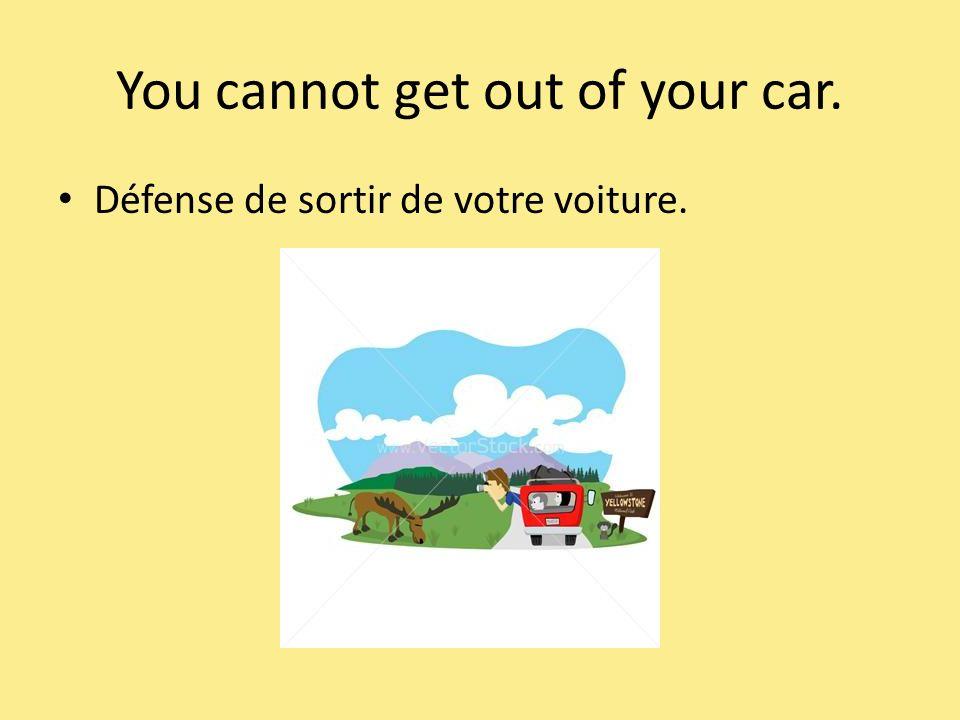 You cannot get out of your car. Défense de sortir de votre voiture.