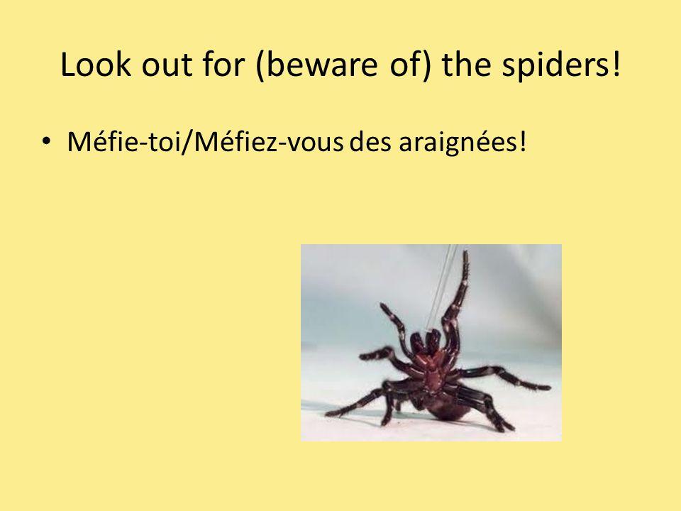 Look out for (beware of) the spiders! Méfie-toi/Méfiez-vous des araignées!