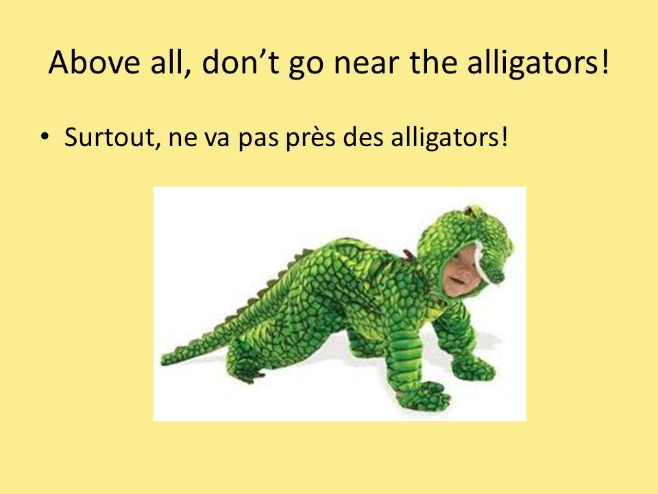 Above all, dont go near the alligators! Surtout, ne va pas près des alligators!