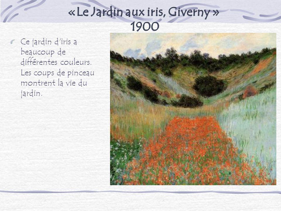 Ce jardin d'iris a beaucoup de différentes couleurs. Les coups de pinceau montrent la vie du jardin.