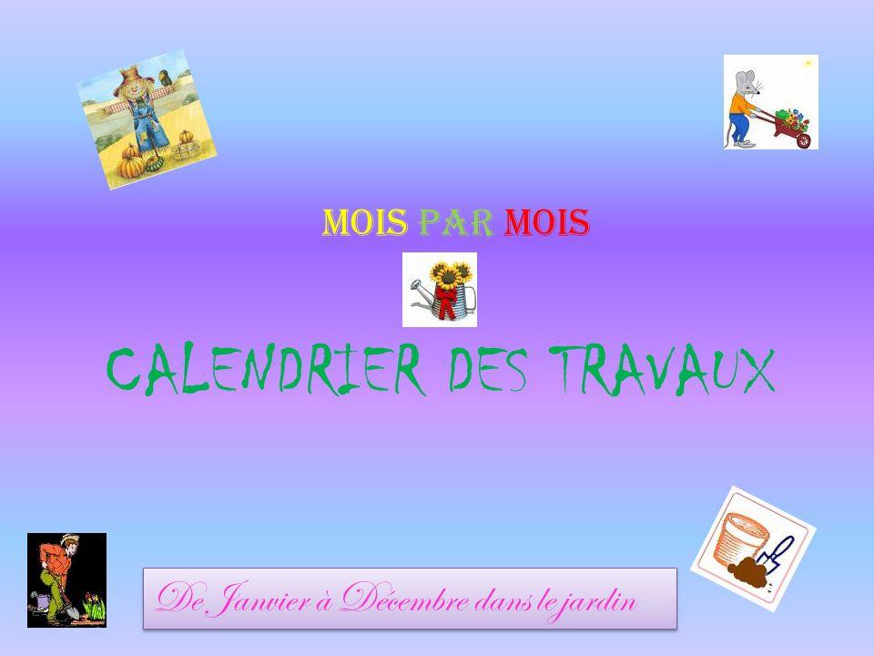 CALENDRIER DES TRAVAUX MOIS PAR MOIS De Janvier à Décembre dans le jardin