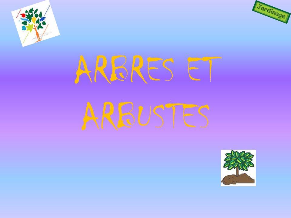 Novembre Plantez les arbres et arbustes à racines nues et en conteneurs.