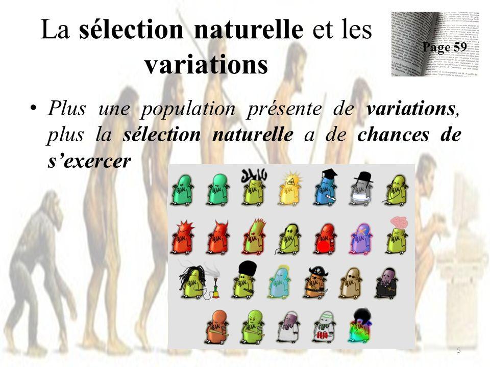 Une pop ayant beaucoup de variations génétiques a plus de chances de survivre quune autre pop, moins variée La sélection naturelle et les variations Page 59 6 POURQUOI ?