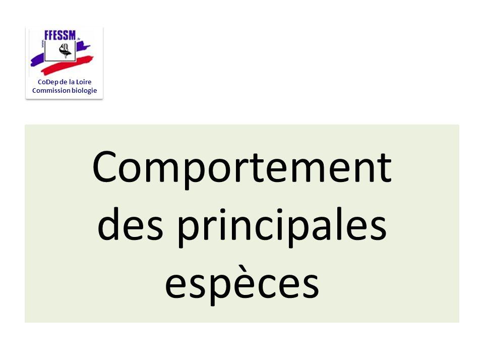 Comportement des principales espèces CoDep de la Loire Commission biologie