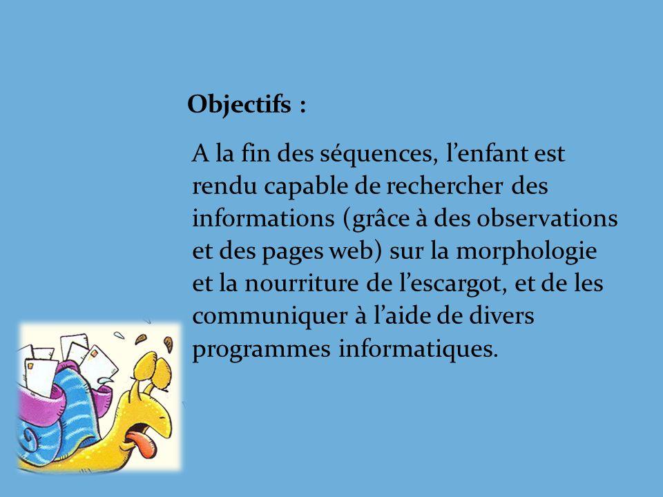 Morphologie de lescargot Yeux Tentacules Bouche Coquille Pied