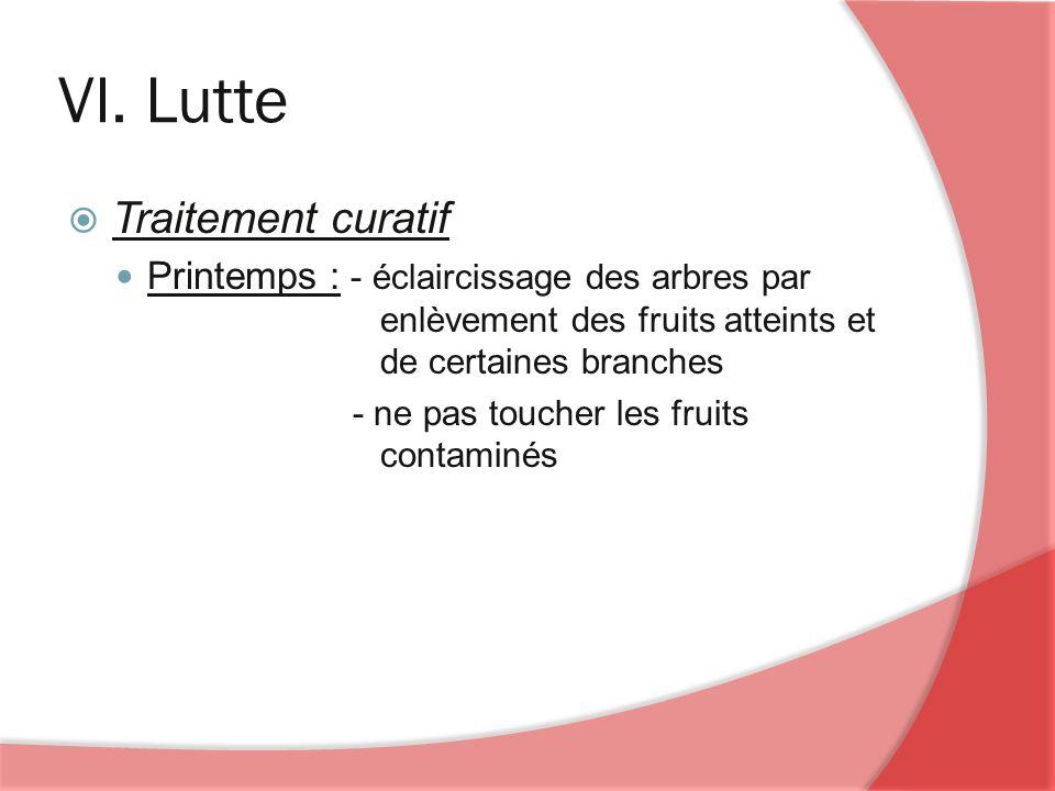 VI. Lutte Traitement curatif Printemps : - éclaircissage des arbres par enlèvement des fruits atteints et de certaines branches - ne pas toucher les f