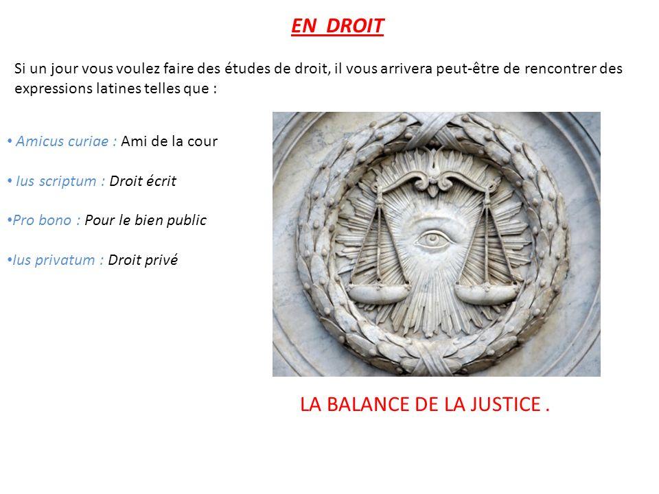Amicus curiae : Ami de la cour Ius scriptum : Droit écrit Pro bono : Pour le bien public Ius privatum : Droit privé EN DROIT Si un jour vous voulez fa