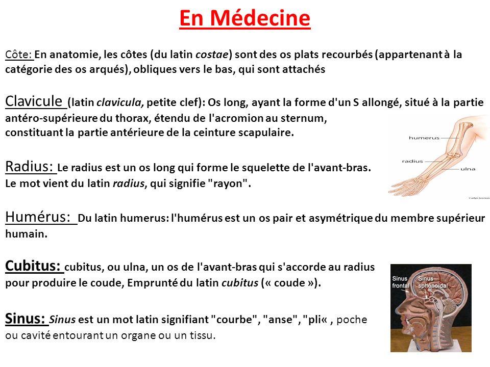 Symbole pharmacien repris de lAntiquité Du caducée d Asclépios caducée dAsclépios, dieu de la médecine pour les grecs En Pharmacie