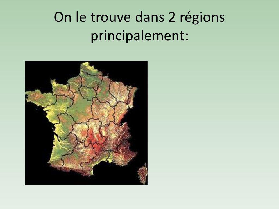 On le trouve dans 2 régions principalement: