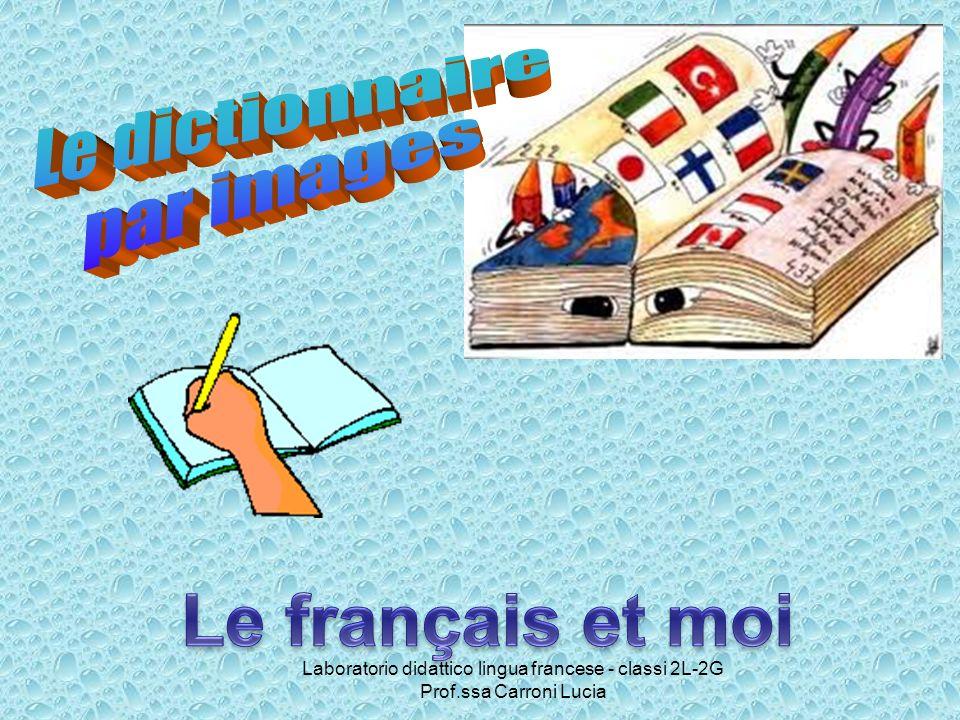 Laboratorio didattico lingua francese - classi 2L-2G Prof.ssa Carroni Lucia