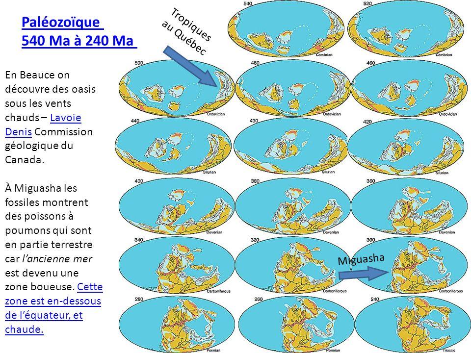 Paléozoïque 540 Ma à 240 Ma Miguasha Tropiques au Québec En Beauce on découvre des oasis sous les vents chauds – Lavoie Denis Commission géologique du