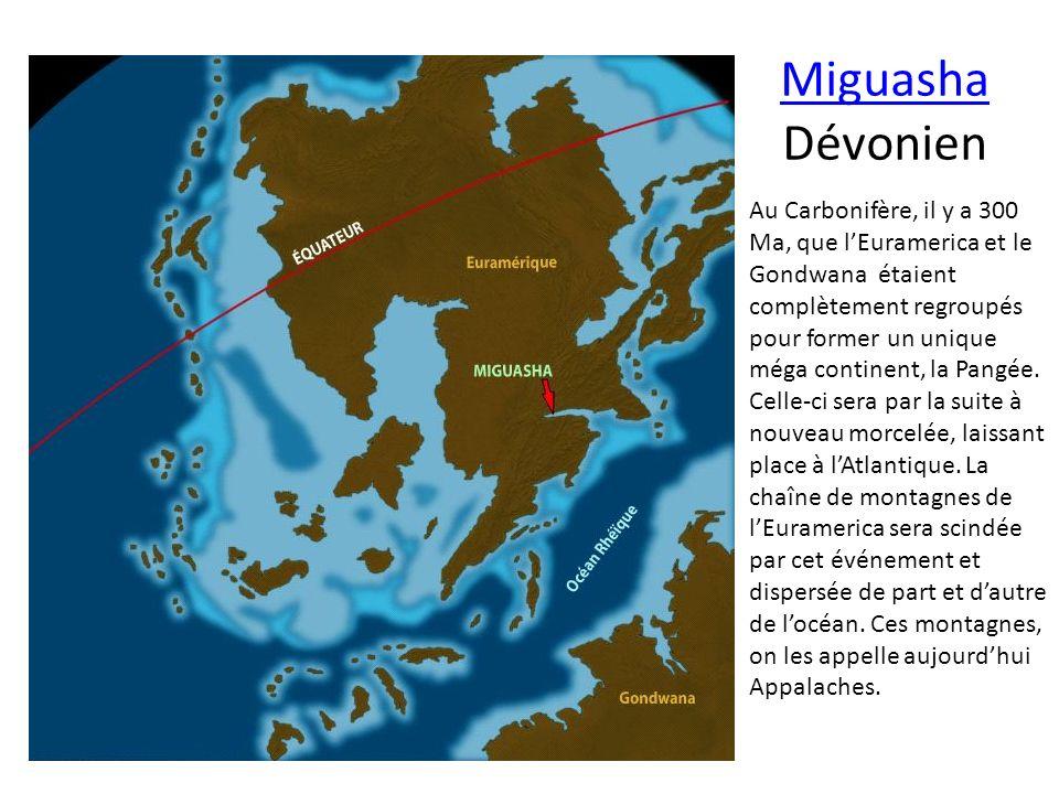 Miguasha Miguasha Dévonien Au Carbonifère, il y a 300 Ma, que lEuramerica et le Gondwana étaient complètement regroupés pour former un unique méga con