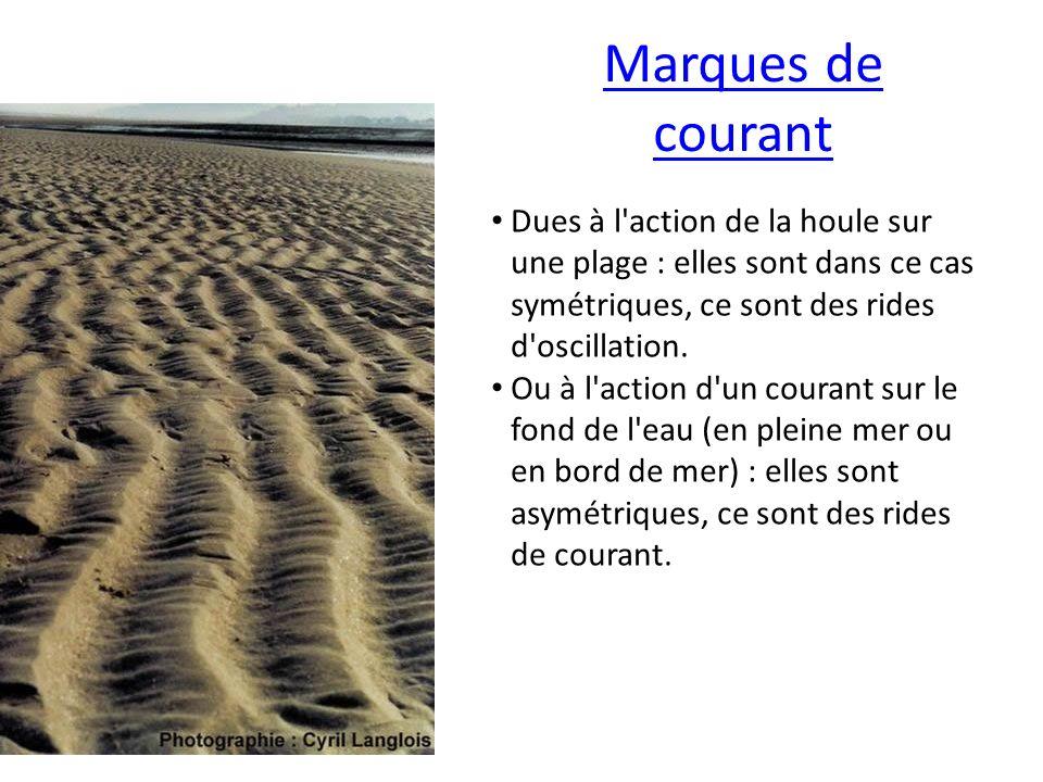 Marques de courant Dues à l'action de la houle sur une plage : elles sont dans ce cas symétriques, ce sont des rides d'oscillation. Ou à l'action d'un