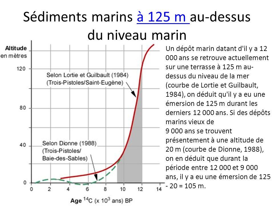Sédiments marins à 125 m au-dessus du niveau marinà 125 m Un dépôt marin datant d'il y a 12 000 ans se retrouve actuellement sur une terrasse à 125 m