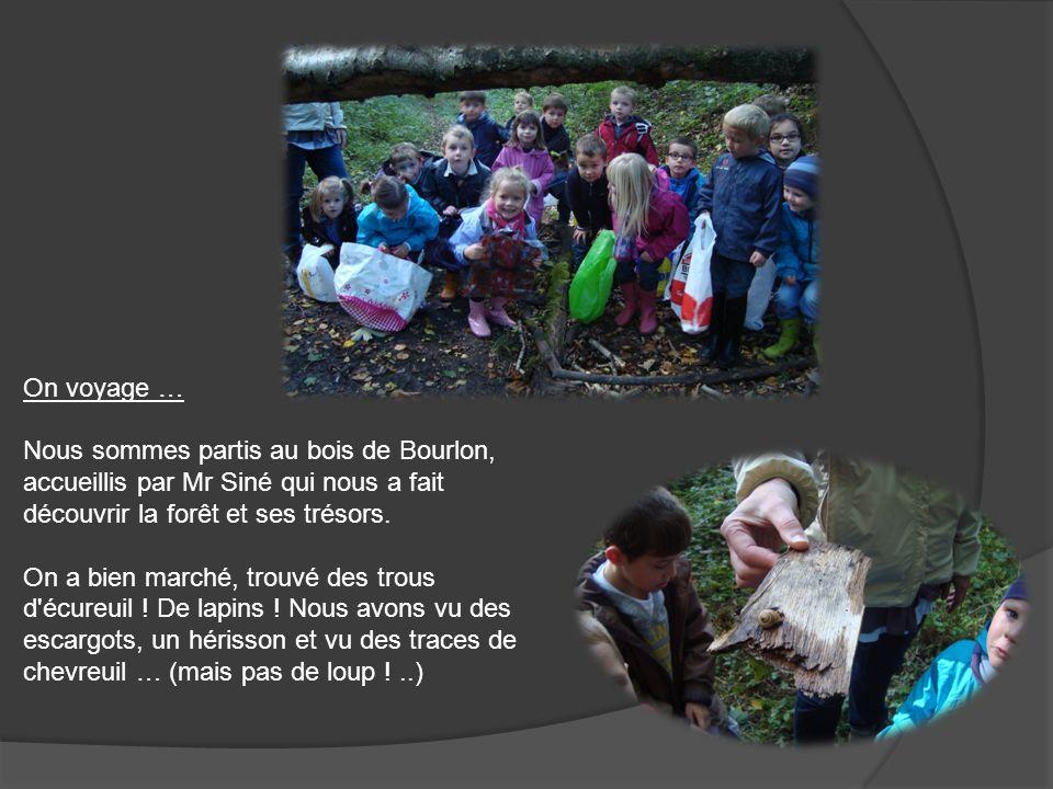 On voyage … Nous sommes partis au bois de Bourlon, accueillis par Mr Siné qui nous a fait découvrir la forêt et ses trésors. On a bien marché, trouvé