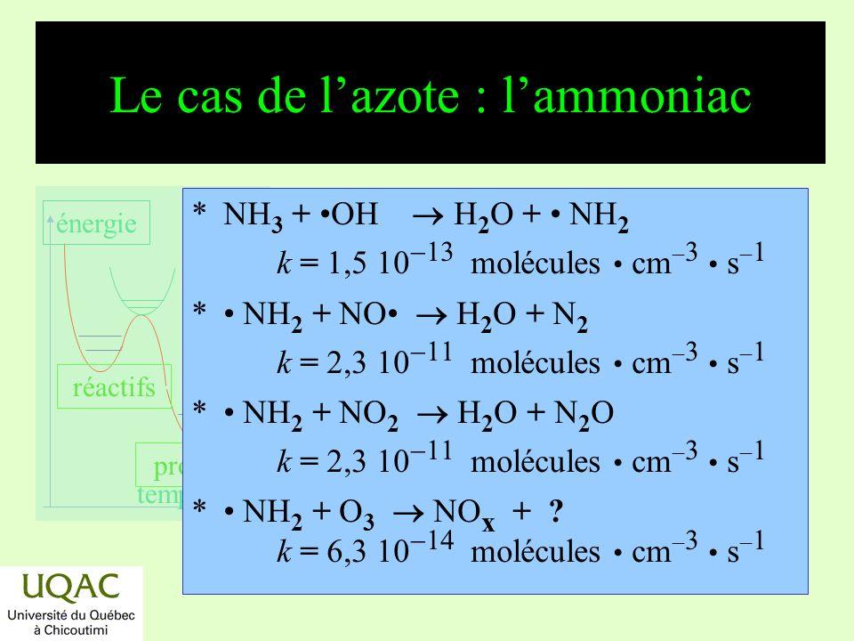 réactifs produits énergie temps Les oxydes dazote NO x Ils jouent un rôle crucial dans les processus doxydo-réduction : R + O 2 ROO ROO + NO RO + NO 2 NO 3 est photodécomposé le jour, il saccumule pendant la nuit et réagit alors avec les hydrocarbures.