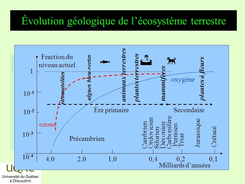 réactifs produits énergie temps Le mécanisme de formation de O 2 *H 2 O + h OH + H, < 240 nm *H 2 O + h H 2 + O *H 2 O + O 2 OH *CO 2 + h CO + O, < 230 nm *O + O + M O 2 + M *O + OH O 2 + H,...