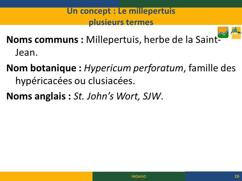 Un concept : Le millepertuis plusieurs termes Noms communs : Millepertuis, herbe de la Saint- Jean.