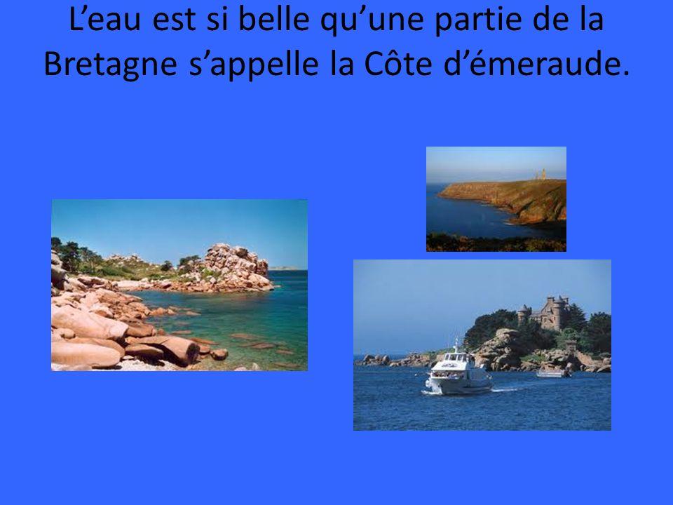 La Bretagne des Celtes.Carnac est célèbre pour ses cinq mille menhirs .