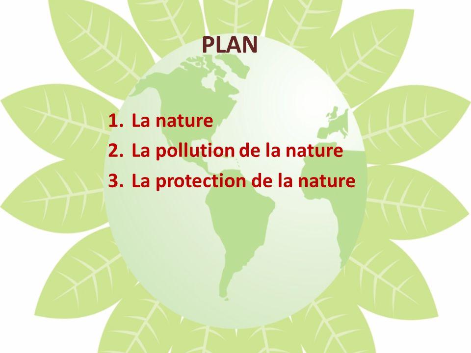 PLAN 1.La nature 2.La pollution de la nature 3.La protection de la nature