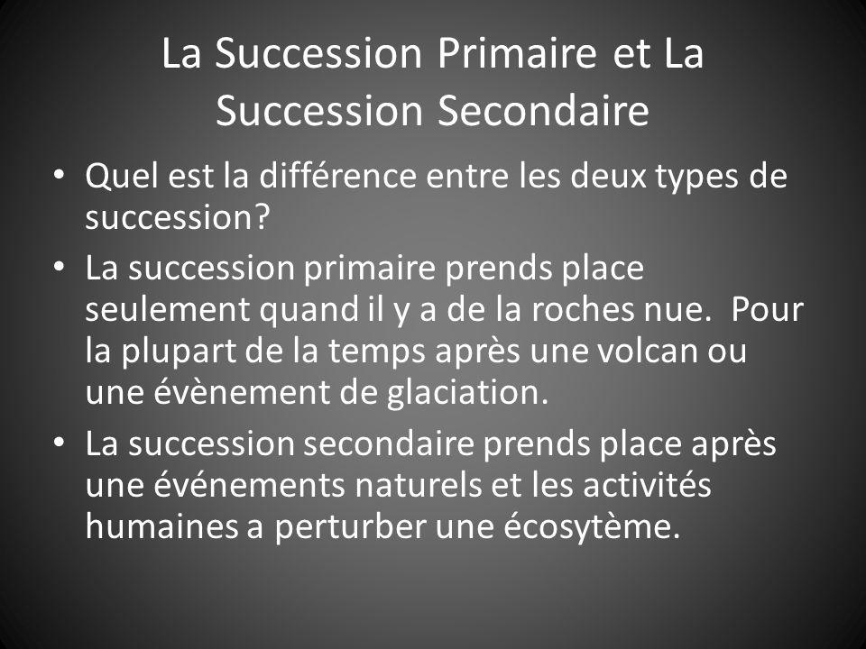 La Succession Primaire et La Succession Secondaire Quel est la différence entre les deux types de succession.