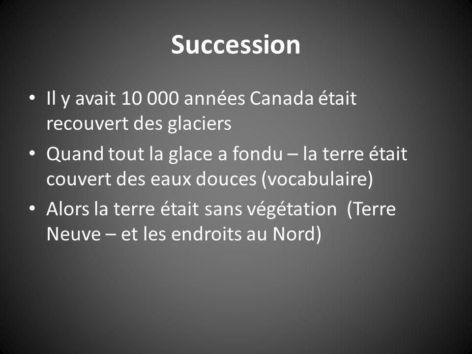 Succession Il y avait 10 000 années Canada était recouvert des glaciers Quand tout la glace a fondu – la terre était couvert des eaux douces (vocabulaire) Alors la terre était sans végétation (Terre Neuve – et les endroits au Nord)