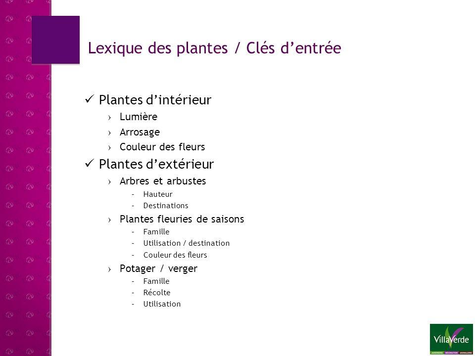 Page daccueil (600x400) LEXIQUE DES PLANTES Symbolisation Intérieur / Extérieur (maison ou plante et arbuste ou autre idée) Accès rapide Menu déroulant avec toutes les fiches en accès 1 clic Descriptif et explication du module : Bienvenue dans le lexique des plantes Villaverde.