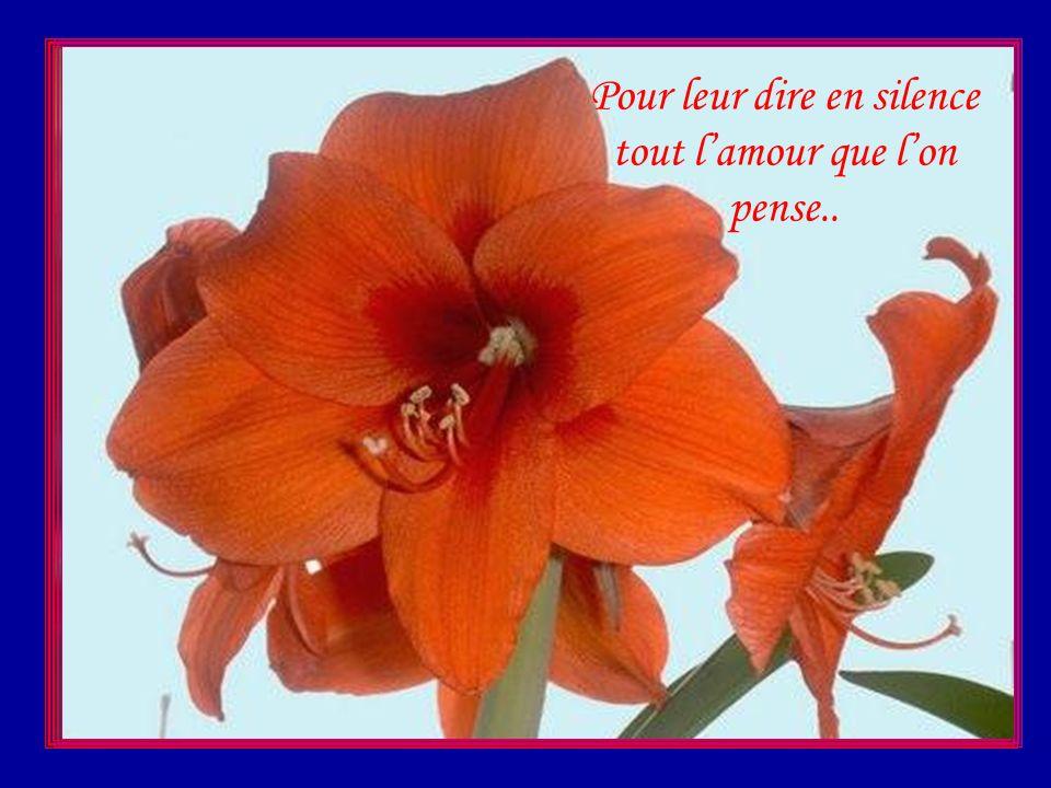 Les fleurs ont un langage qui parle aux gens sages