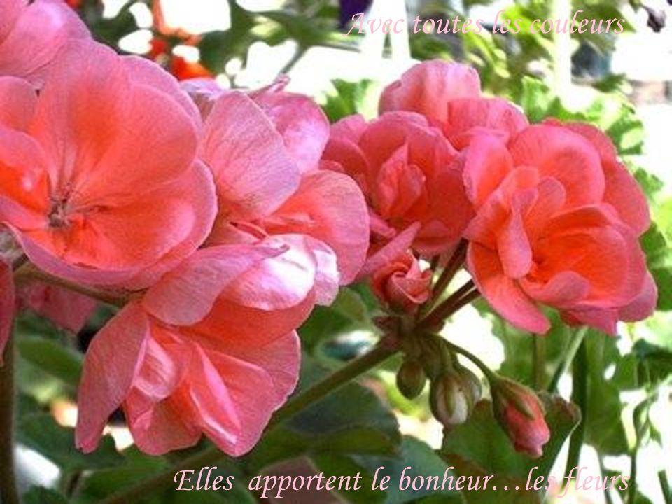 Avec toutes les couleurs, elles apportent le bonheur Avec toutes les couleurs Elles apportent le bonheur…les fleurs