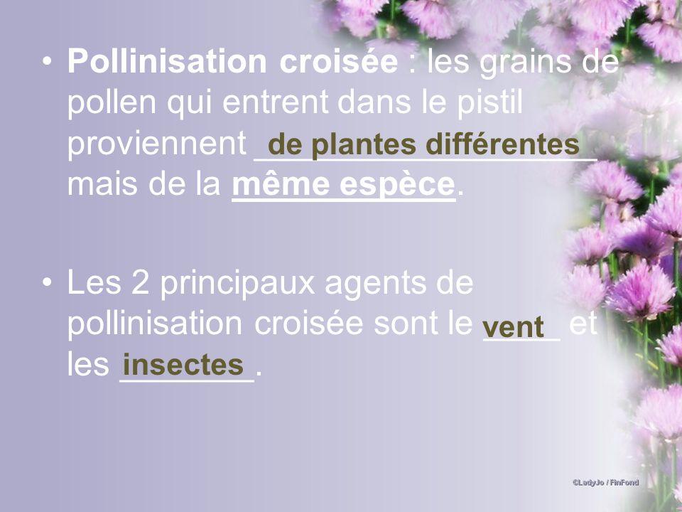 Pollinisation croisée : les grains de pollen qui entrent dans le pistil proviennent __________________ mais de la même espèce. Les 2 principaux agents
