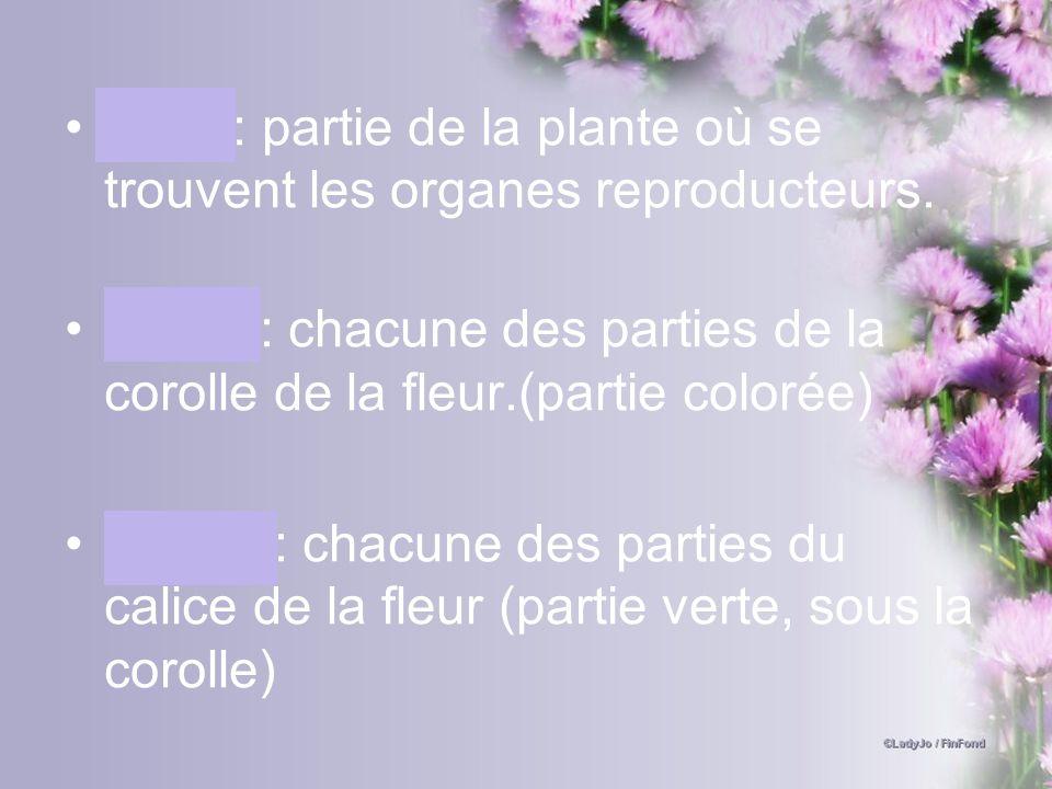 Fleur: partie de la plante où se trouvent les organes reproducteurs. Pétale: chacune des parties de la corolle de la fleur.(partie colorée) Sépale: ch
