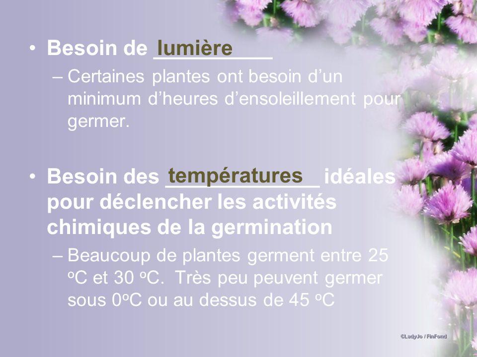 Besoin de __________ –Certaines plantes ont besoin dun minimum dheures densoleillement pour germer. Besoin des _____________ idéales pour déclencher l