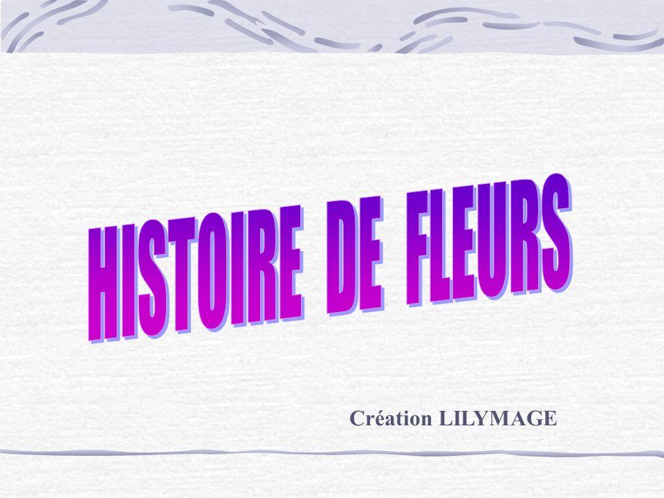 Cézanne Les chrysanthèmes Langage des Fleurs : La longévité et la beauté parfaite.