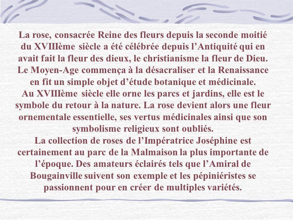 Renoir Vase de roses Langage des Fleurs : Rose blanche : amour pur Rose rouge : amour ardent Rose pompon : gentillesse Rose jaune : infidélité Rose ro