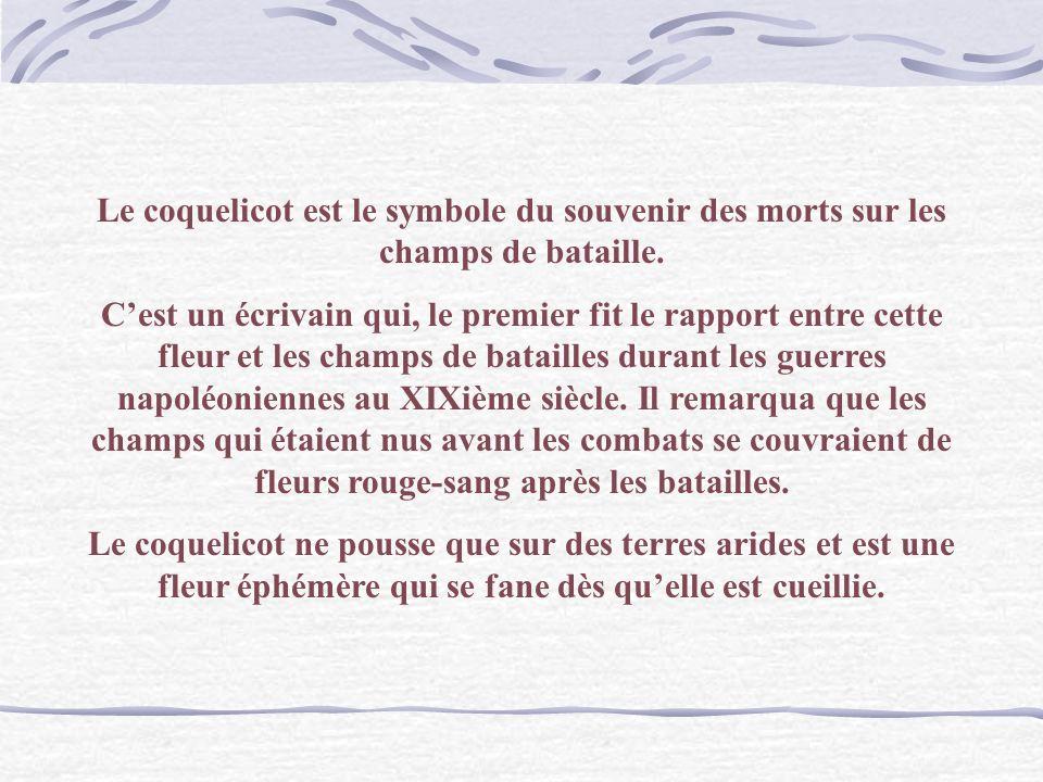 Van Gogh Les Coquelicots Langage des Fleurs : Ardeur fragile.