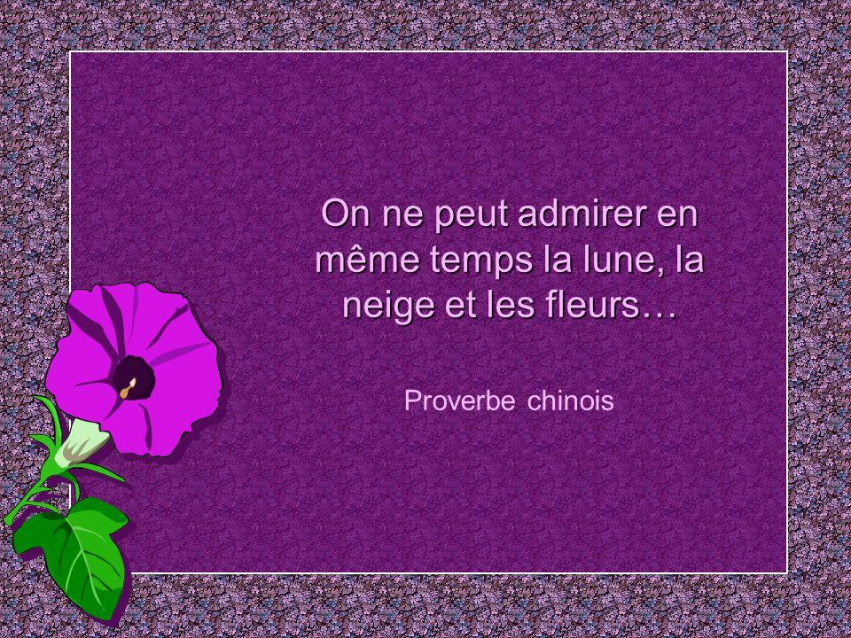 Pour celui qui a le nez bouché toutes les fleurs semblent en papier… Léonce Bourliaguet