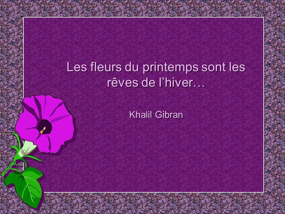 Il est détranges soirs où les fleurs ont une âme… Albert Samain
