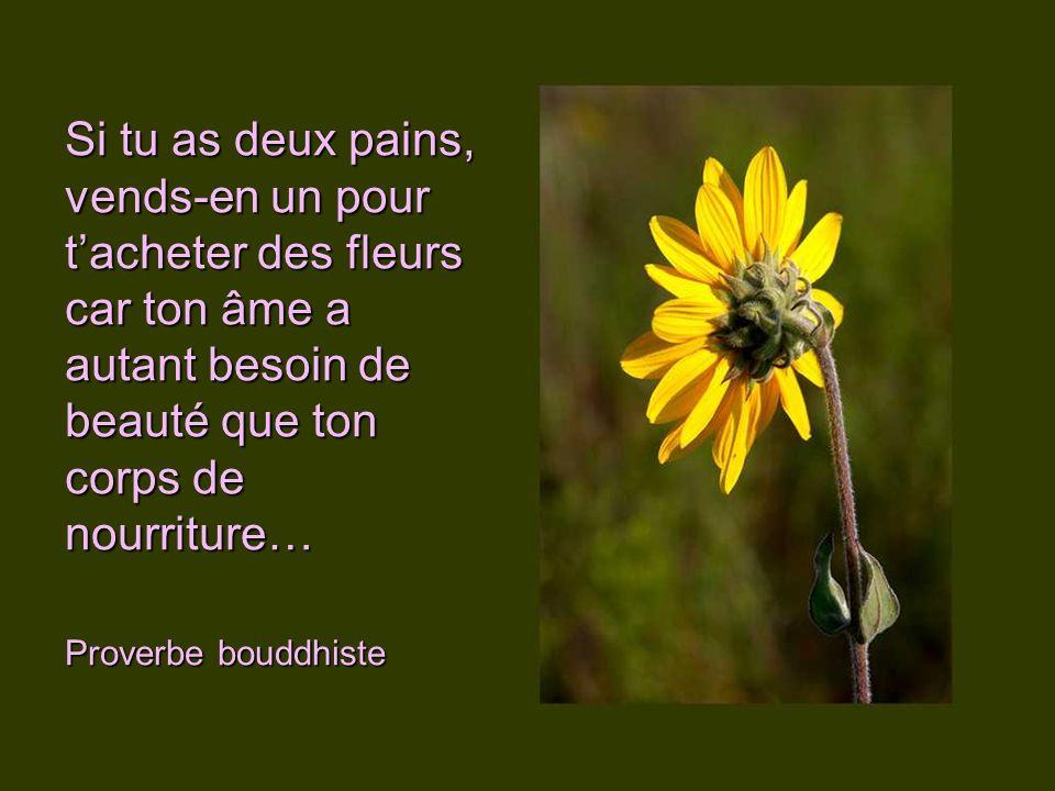 Y a-t-il une oreille assez fine pour entendre le soupir des fleurs qui se fanent… Arthur Schnitzler