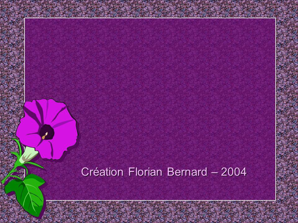 Offrir une fleur, cest de lamour; Offrir dix fleurs, cest de la passion; Offrir cent fleurs, cest assister à des funérailles… Jean Cocteau