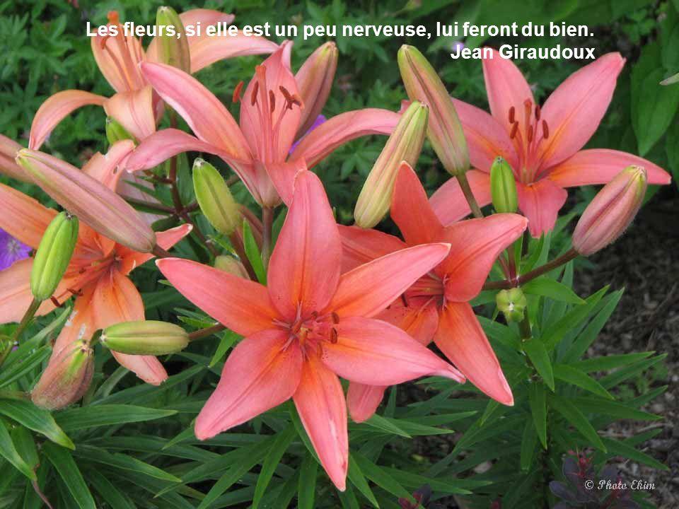 La grâce de la nouveauté est à l'amour ce que la fleur est sur les fruits; elle y donne un lustre qui s'efface aisément, et qui ne revient jamais. Fra